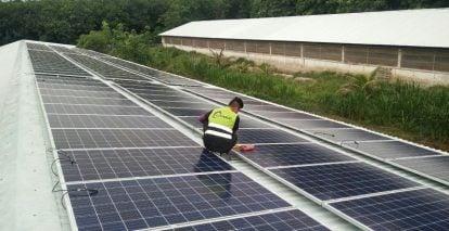 Mô hình trại heo kết hợp điện mặt trời