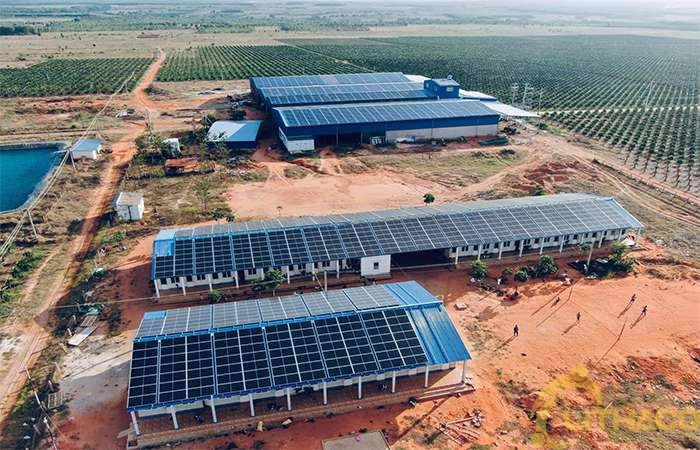 Điện năng lượng mặt trời có phù hợp với doanh nghiệp của tôi không?