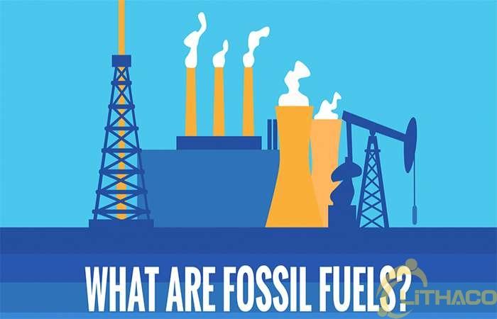 Nhiên liệu hóa thạch là gì? 1